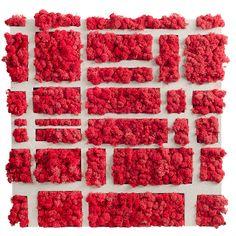 Moss Graffiti, Biorb, Moss Art, Forget Me Not, Mondrian, Flower Wall, Wall Design, Greenery, Raspberry