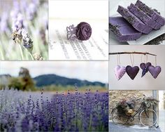 lavender and purple things