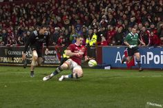 Guinness, Munster Rugby, Rugby Sport, World Rugby, Basketball Court, Sports, Men, Hs Sports, Excercise