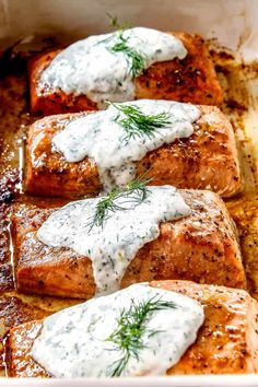 Baked salmon with dill sauce - side view of healthy oven-baked salmon . - Baked salmon with dill sauce – side view of healthy oven-baked salmon fillets in a row with dill -