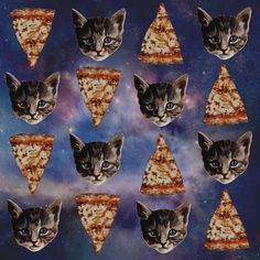 Cats and Pizza.