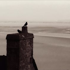 """@dimval's photo: """"#view from Le Mont-Saint-Michel 