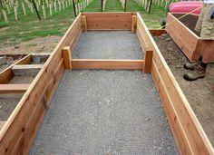 all-about-raised-bed-garden-apieceofrainbowblog (7)