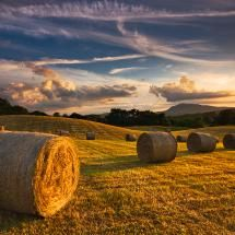 Bales of hay in the field are one of my MOST FAVORITE things ever!!! So beautiful!