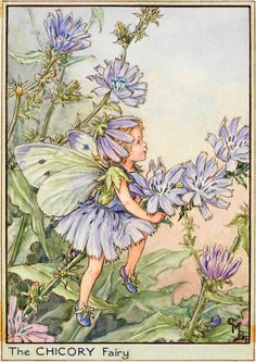 By the white cart-road, Dusty and dry, Look! there is Chicory, Blue as the sky! Or, where the footpath Goes through the corn, See her bright flowers, Each one new-born! Though they fade quickly, O, have no sorrow! There will be others New-born tomorrow!