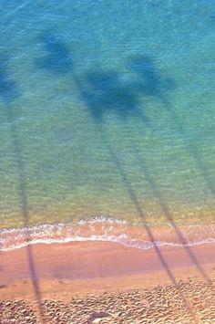 Beach | Ocean | Sand | Pink Sand | Palm Trees | Water Reflections | Summer | Inspiration