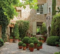 Terra cotta pots planted with boxwoods add interest to this small courtyard.