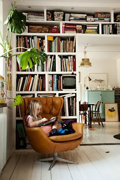 book shelves, plants, leather chair