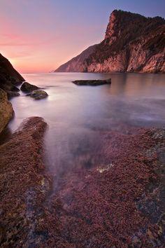 Red Passion - Portovenere, Province of La Spezia Liguria region Italy