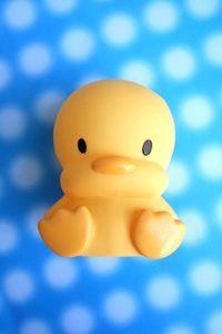 cute rubber duckie