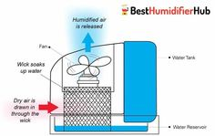 Best Humidifier in UK – Top 10 Hottest List for May. Vicks Humidifier, Vaporizer Humidifier, Steam Humidifier, Warm Mist Humidifier, Humidifier Filters, Best Humidifier, Ultrasonic Cool Mist Humidifier, Large Room Humidifier, Winter Allergies
