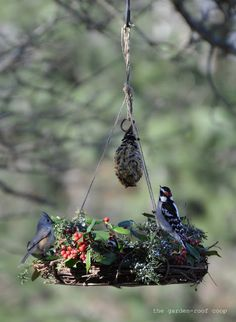 bird feeder made from grapevine wreath