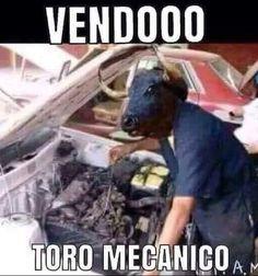 Toro  #comico #toquedehumor