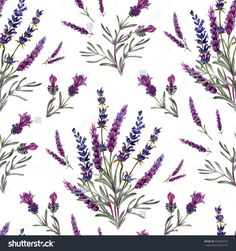 seamless pattern with lavender flowers. Hand painting for fabric and web projects.