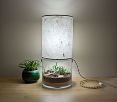 Large Round Terrarium/Display Table Lamp with by SHareStudios, $189.00