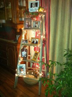 Recycle the life of an old ladder!