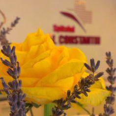 #beautiful #bouquet #rose #lavander  #floweroftheday