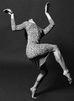 Leopard Dancer
