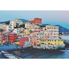 The colorful fisherman's village of Boccadasse in #Italy. Photo courtesy of dreamsinhd on Instagram.