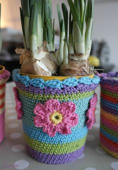 crochet container plant