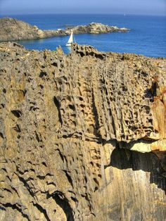 Erosió alveolar dels esquists - Cap de Creus,  Alt  Empordà, Catalonia