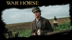 War Horse is a 2011 epic war film adaptation of War Horse, a 1982 children's novel set before and during World War I, by British author Michael Morpurgo, and the 2007 stage adaptation of the same name. It was directed by Steven Spielberg. Steven Spielberg Movies, Richard Curtis, Emily Watson, Jeremy Irvine, Michael Morpurgo, Film Adaptation, War Film, Stage Play, Horse Stuff