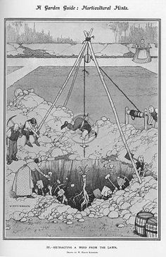 Old cartoon print of an illustration by William Heath Robinson (1872-1944) showing a typically convoluted method of weeding a garden lawn. A man is hosted by ropes supported by a teepee configuration of poles worked by onlookers. He holds a corkscrew type instrument in his hand, in order to extract a single weed. Robinson was a regular contributor to the Sketch, the Bystander and other Illustrated London News titles during his lifetime. His weekly drawings featuring mind-boggling ...