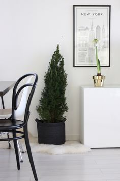 Homevialaura | Christmas decor | Skultuna Flower Pot in brass from http://www.zarro.fi/store