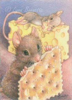 "Cheese & Crackers"" Art by Lynn Bonnette: February 2011 Mouse Illustration, Mouse Pictures, Marjolein Bastin, Pet Mice, Cute Mouse, Woodland Creatures, Whimsical Art, Beatrix Potter, Cute Art"