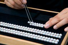 Le calibrage des perles par les experts Mikimoto