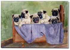 Pug Art Prints, Posters, Paintings - Pugs @ DogBreed-Gifts.com