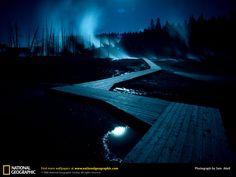 Yellowstone. Norris Geyser Basin; rising ghosts; Nightmare Before Christmas