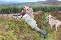 Elaine- Graphic Designer: Deer Stalking in Scotland