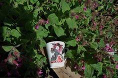 """Slem pike"" cup , by Anna Strøm design og Norway AS , old Norwegian traditional cup,For Bad girl, gift for girl, idea for for girts,cup for girl,mug,design mug,mug,cup,krus,kopp,Snill Pike cup Mug Art, Mug Designs, Gifts For Girls, Scandinavian Design, Norway, Cool Girl, Anna, Porcelain, House Design"