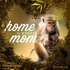 The jungle can be wild, but mom makes everything okay! #MonkeyKingdom