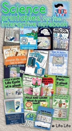 Science foldables K-2 English-Spanish you can buy them in bundle too!