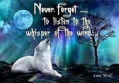 Listen to the wind. Wolf Qoutes, Lone Wolf Quotes, Dog Quotes, Animal Quotes, Wisdom Quotes, True Quotes, Magic Quotes, Animal Spirit Guides, Wolf Spirit Animal