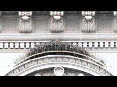 Where to find Peregrine Falcons in NYC. Eagles, Hawks and Falcons - Urban Hawks.