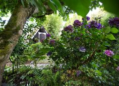 An old playhouse is used as a garden shed in the Samuelson's vintage garden…