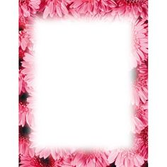 decorative backgrounds for word documents | Top 10 Free Flower Borders To Download Now: Unique and Versatile ...