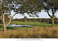 The Nicklaus Course at Bay Point Resort Golf Club In Panama City Beach