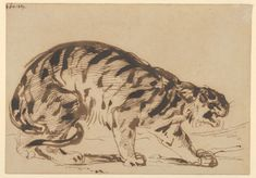 Eugène Delacroix (French, 1798–1863) | Crouching Tiger, 1839 | The Metropolitan Museum of Art, New York, Gift from the Karen B. Cohen Collection of Eugène Delacroix, in honor of Sanford I. Weill, 2013 (2013.1135.5)