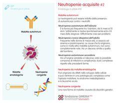 Ematologia in pillole #18 Neutropenie acquisite (2) - Fondazione GIMEMA Onlus