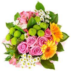 kwiaty, flores, kwiaty, kwiaty, png