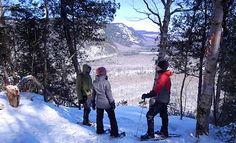 Sentier Boucle de la Hauteur   Raquette : Bras-du-Nord   Vallée Bras-du-Nord Winter Activities, Quebec, Snow, Outdoor, Snow Activities, Pathways, Travel, Locs, Arms