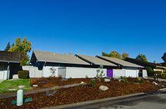 Yard Crashers, Diy Network, Nursery Design, Landscape Design, Gazebo, Landscaping, Outdoor Structures, Facebook, Fall