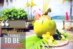 Motivate, hydrate, feel great @ Badian Island Wellness Resort! #badianisland #feelawesome #cebusouth #beautifuldestinations salesreservations@badianwellness.com Tel. no: (032) 401-3303, (032) 401-3305, (032) 475-0010