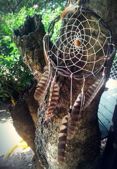 Planejo, entrego, confio e aceito. ♡  Filtro de sonhos confeccionado com cipó e penas naturais de coruja (colhidas sem sofrimento animal) #dreamcatcher #naturally #xamã #culture #art