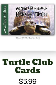 These are great gifts for the dad who has anything! Need a Father's Day gift? Groomsmen gift? Birthday gift? Retirement gift? A Tradition Dating Back to WWII What started out as a way for WWII pilots to blow off steem has blossomed into an ever growing community.  It all starts with a simple question. Are you a Turtle? From there the laughter and fun begins! Folded Business Cards, Blow Off, How To Influence People, Retirement Gifts, Groomsman Gifts, Pilots, Turtles, Groomsmen, Wwii