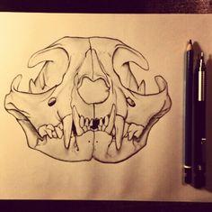 Illustration of a bobcat skull. Skull, Graphic Design, Creative, Illustration, Photography, Art, Art Background, Photograph, Fotografie